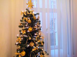 Рождественская и новогодняя елка в Посольстве Словакии