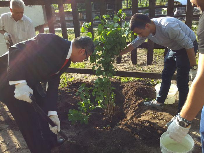 Посол Узбекистана Афзал Артыков сажает куст сирени в латвийской земле