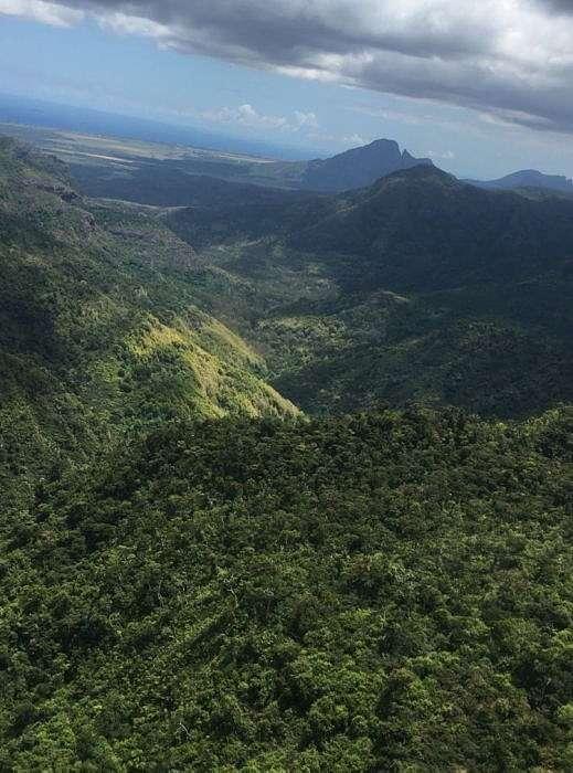 Остров Маврикий Black River
