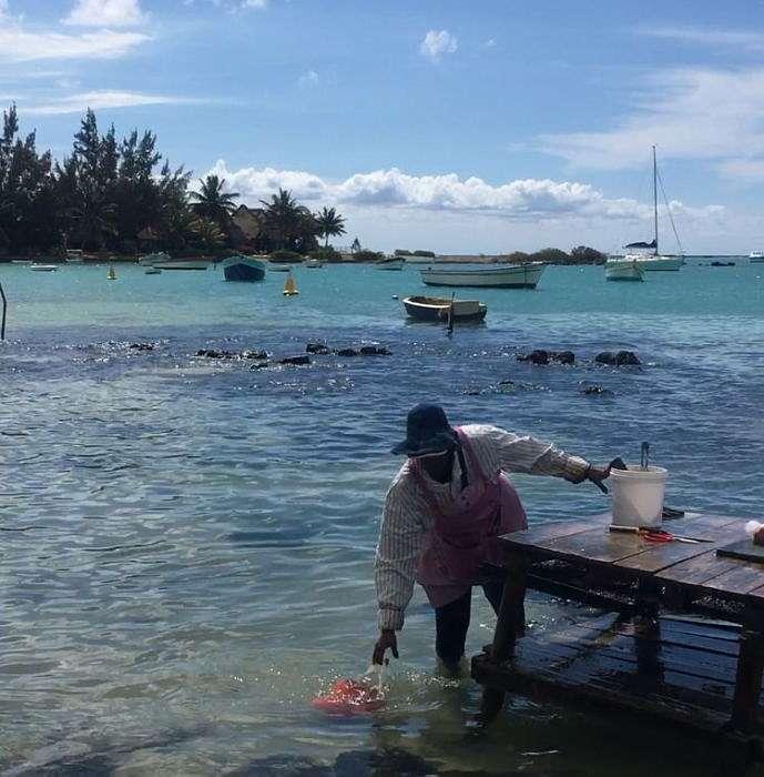 Остров Маврикий Cap Malheureux