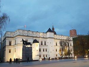 Укрепление международного сотрудничества. Встреча клуба в Вильнюсе