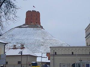 Встреча членов клуба в Вильнюсе. Памятник Гедеминасу