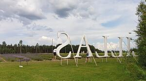 Красивые места Латвии. Лавандовые поля –Lillas Lavender