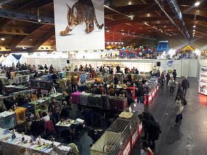 выставка Zooekspo  вРиге